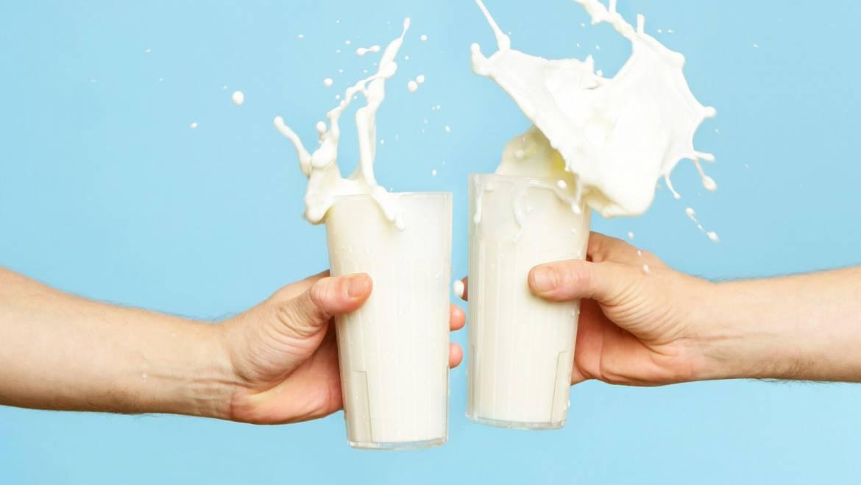 Tutti i benefici del latte, anche per chi è intollerante