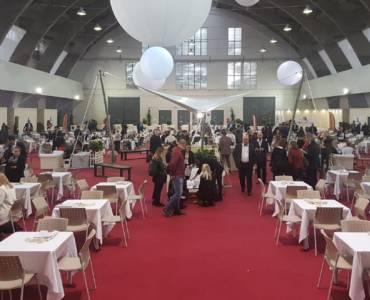 Iaquilat presente a Pavia all'evento Mirabilia