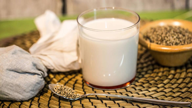 Differenza tra latte, lattosio e rispettive intolleranze
