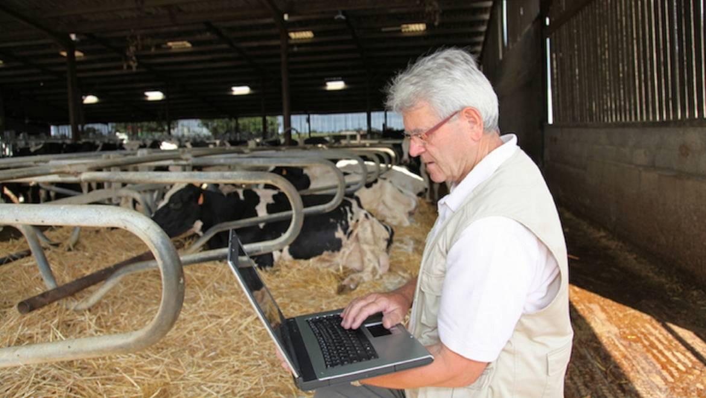 Quando digitale fa rima con allevamento